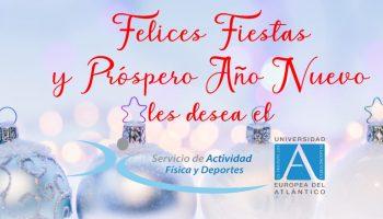 Felices Fiestas y Próspero Año Nuevo!