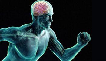 Rendimiento académico y ejercicio físico
