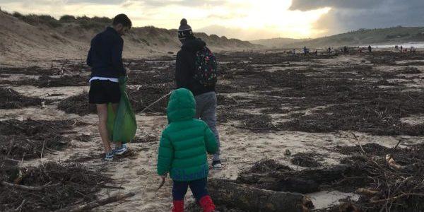 Cantabria Limpia: una decena de estudiantes y docentes recogen basura en la playa de Liencres