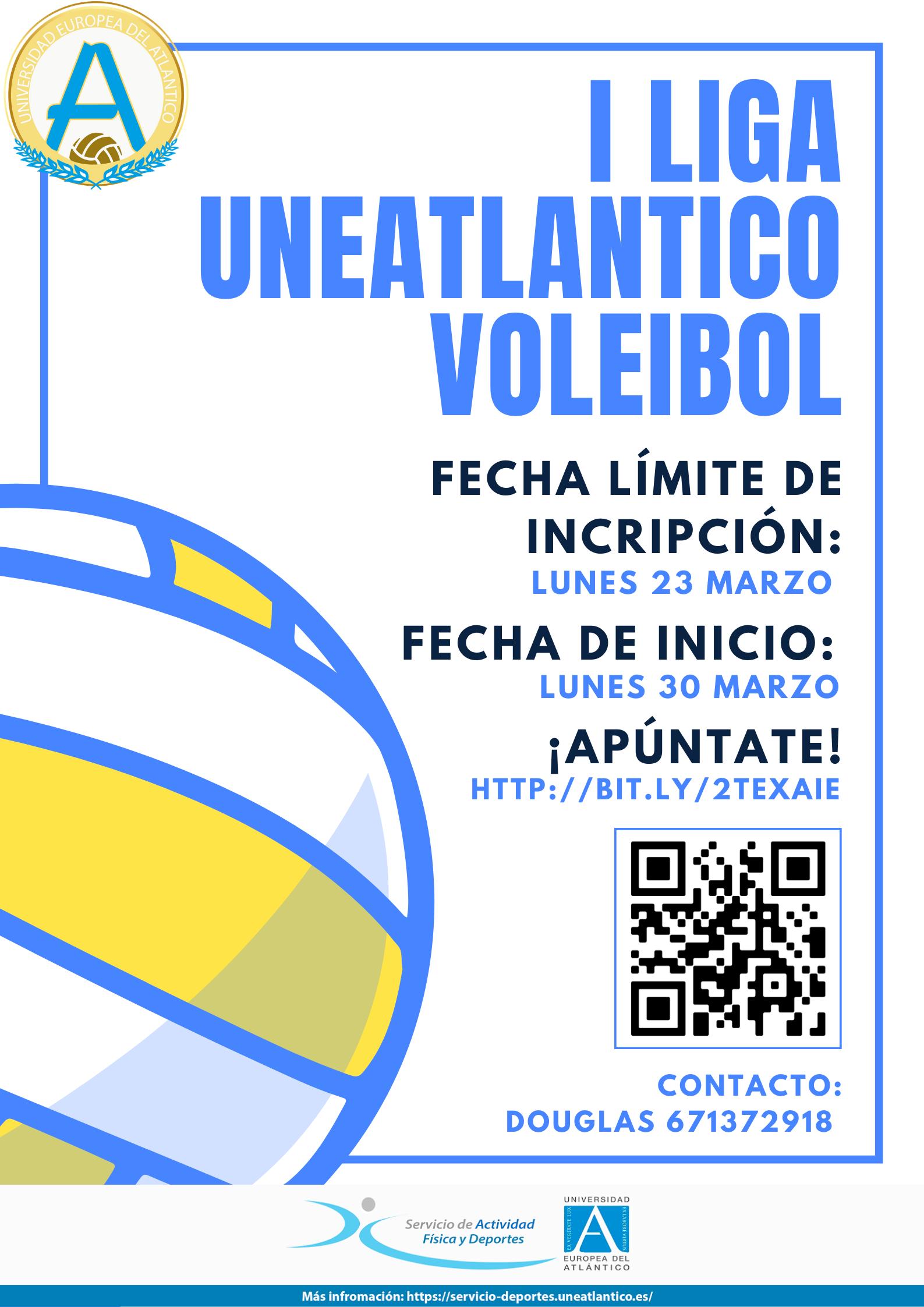 cartel-liga-voleibol